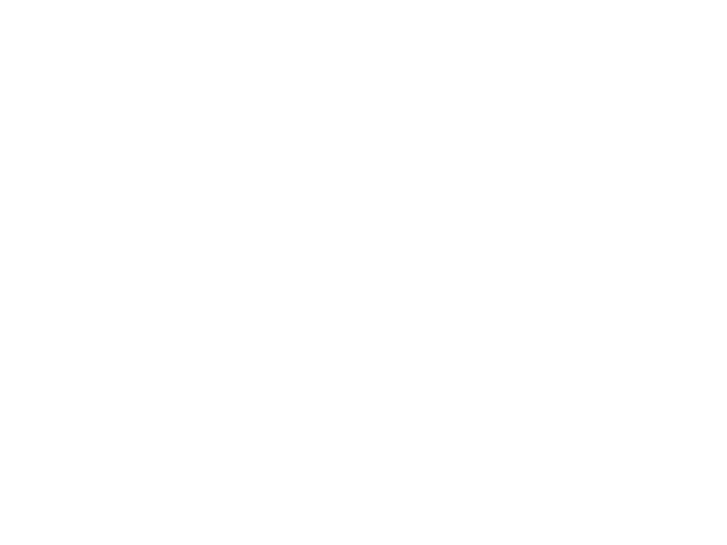 parramatta-council