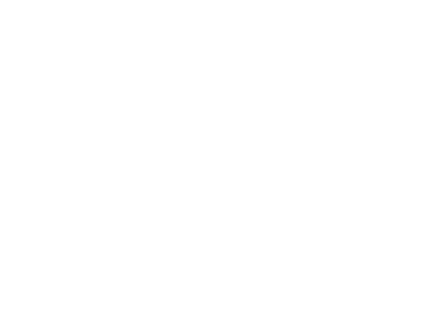 nsw health logo