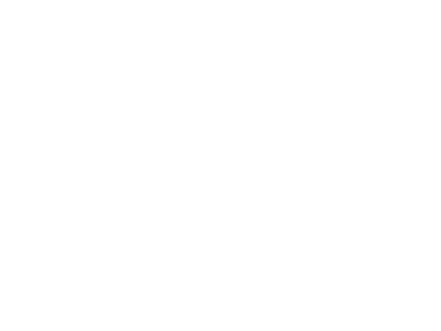 transport nsw logo